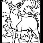 Deer 01 Coloring Page