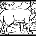 Fox 01 Coloring Page