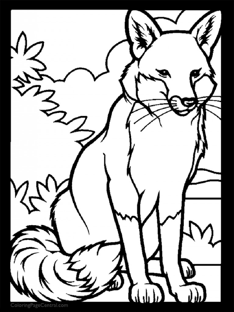 Fox 02 Coloring Page