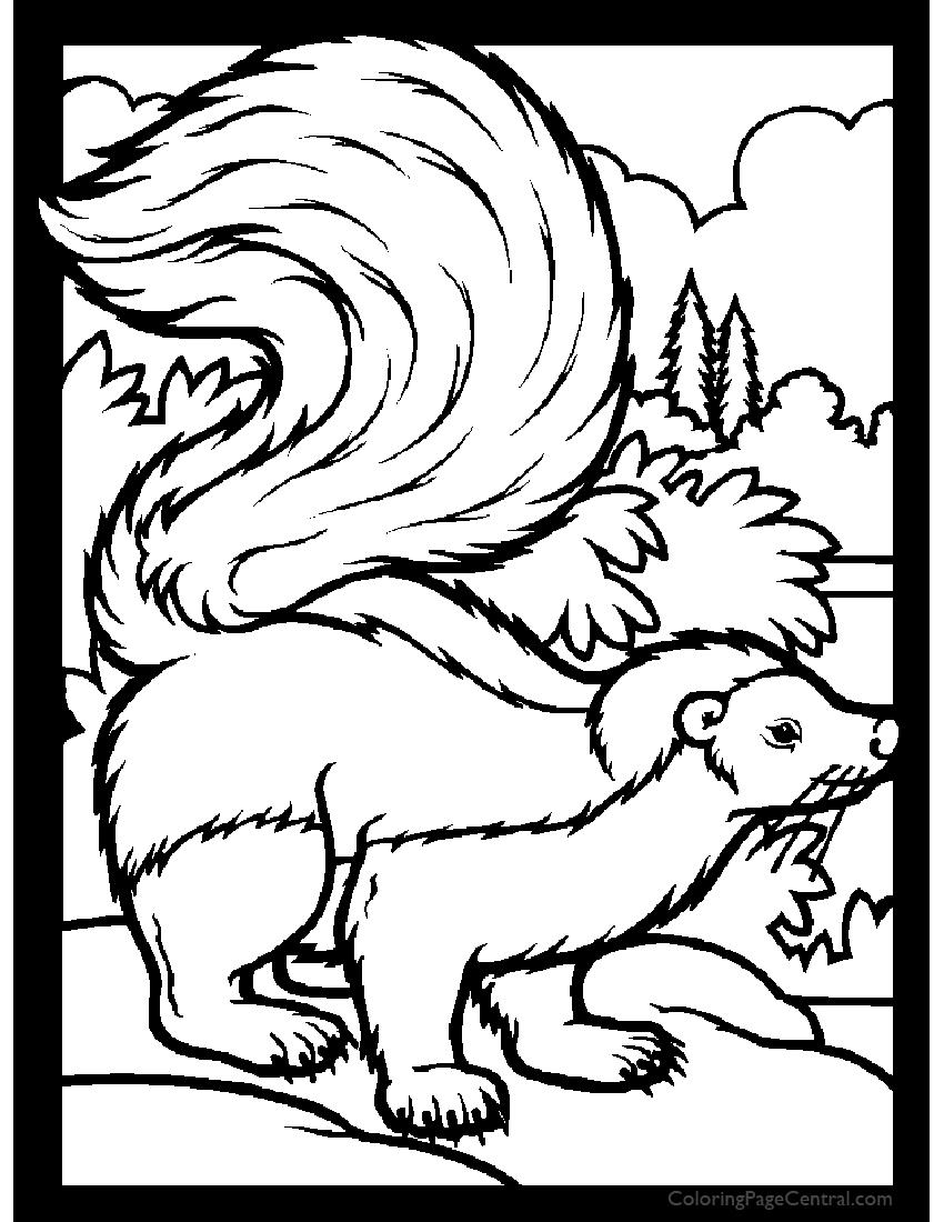Skunk 01 Coloring Page