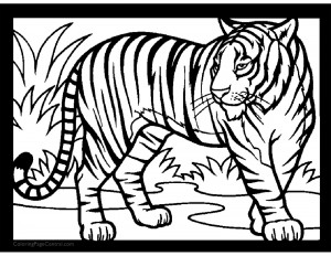 Tiger 01 Coloring Page
