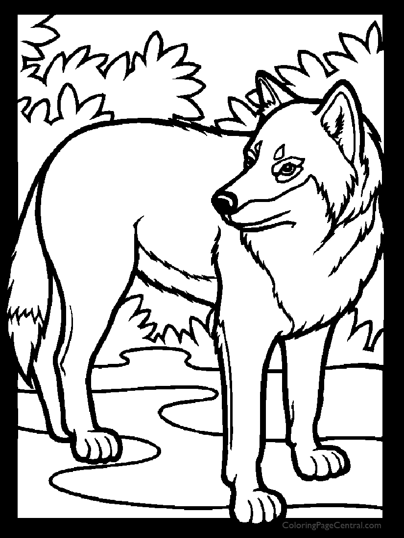 Wolf 01 Coloring Page
