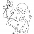 Camel 01 Coloring Page