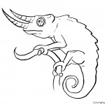 Chameleon 01 Coloring Page