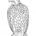Eagle 01 Coloring Page