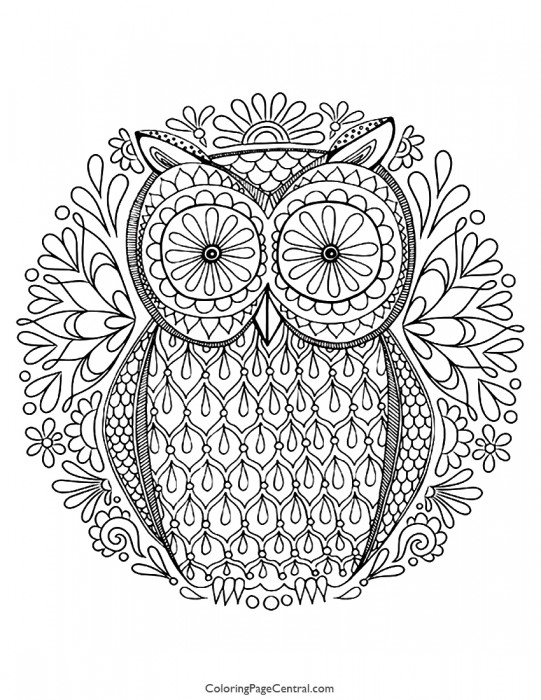 Owl 03 Coloring Page