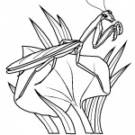 Praying Mantis 01 Coloring Page